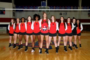 2016-volleyball-picture